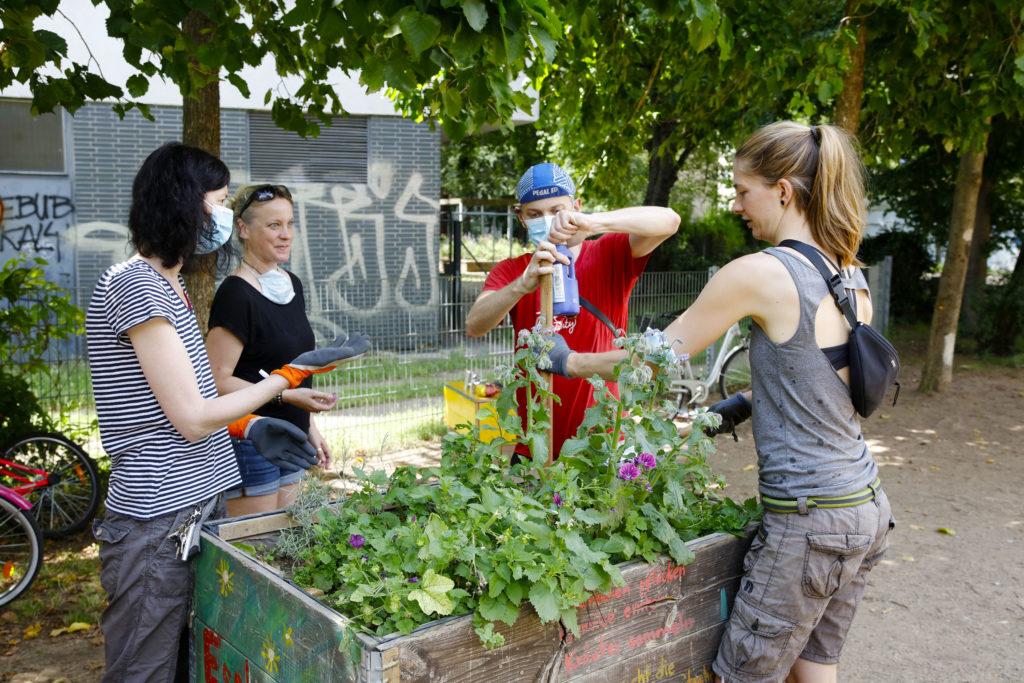 Impression der Aktion: Gärtnern, Malen und Bauen im Schäfergarten